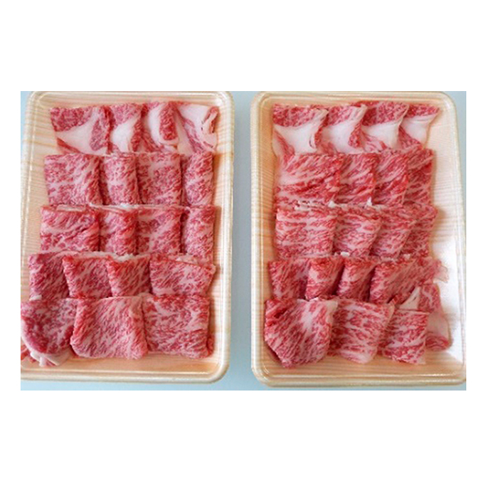 【ふるさと納税】A5等級飛騨牛焼き肉用1kg ロース又は肩ロース肉 【ロース・お肉・牛肉・焼肉・バーベキュー】
