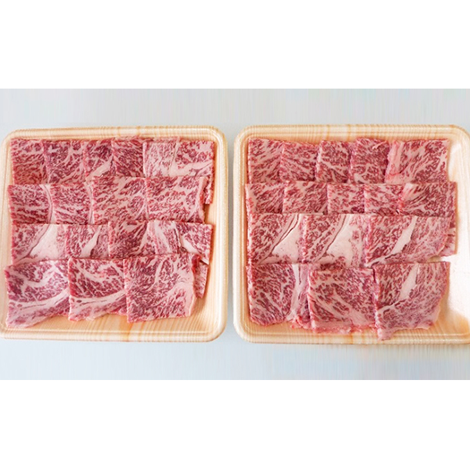 【ふるさと納税】A5等級飛騨牛焼き肉用600g ロース又は肩ロース肉 【ロース・お肉・牛肉・焼肉・バーベキュー】