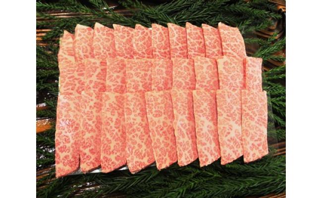 【ふるさと納税】飛騨牛4等級以上の極上ばら肉焼き肉用500gをお届けします![E0028]