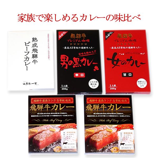【ふるさと納税】飛騨牛味くらべセットA 4種類5食セット[B0072]