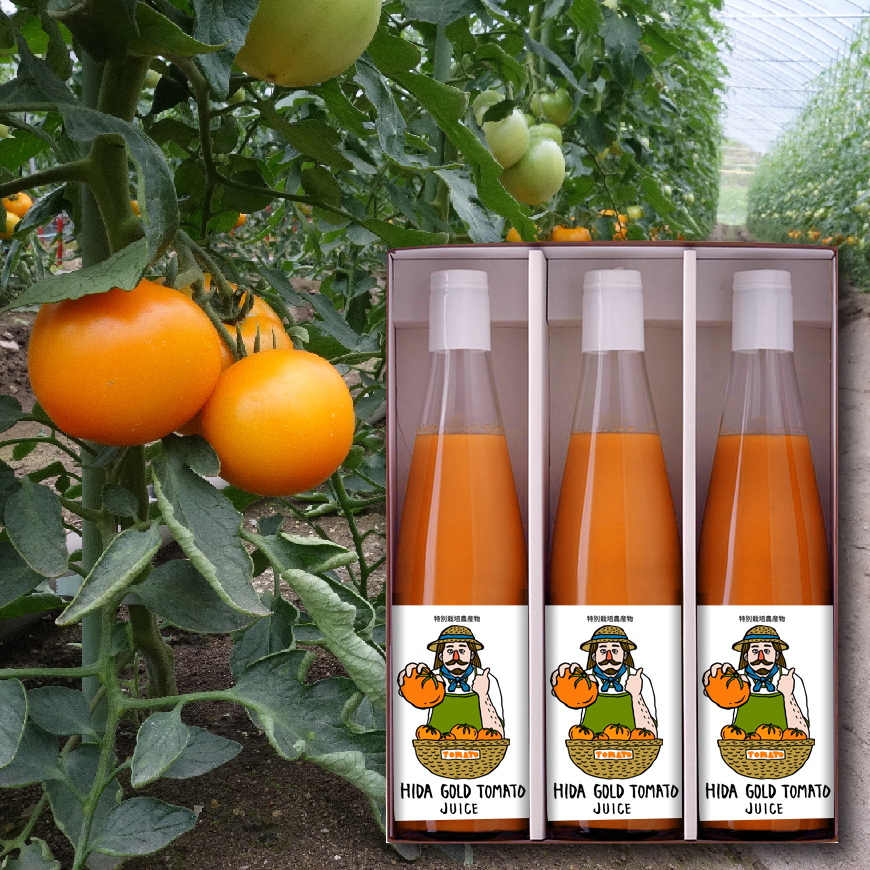 【ふるさと納税】飛騨ゴールドトマトジュース 500ml×3本[B0190]