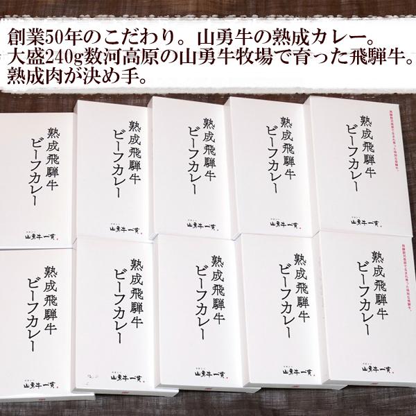 【ふるさと納税】熟成飛騨牛カレー 10食セット[D0034]