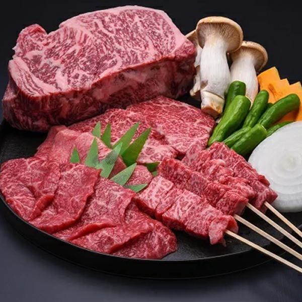 【ふるさと納税】《夏季限定》飛騨牛BBQセット もも焼肉用300g・上カルビ焼肉用300g・牛串10本セット バーベキュー 牛肉 和牛 肉 御中元 お中元[E0021]