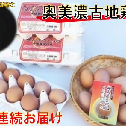 【ふるさと納税】神代の味の再現 奥美濃古地鶏の卵【3ケ月連続お届け】 【定期便・卵】