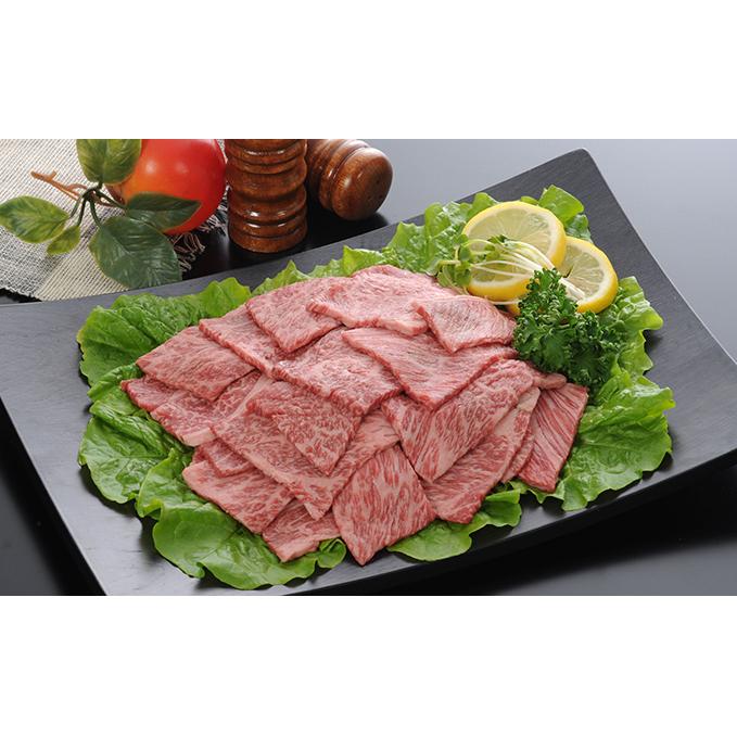 【ふるさと納税】飛騨牛ロースまたは肩ロース600g(焼肉・BBQ用) 【ロース・お肉・牛肉・焼肉・バーベキュー】