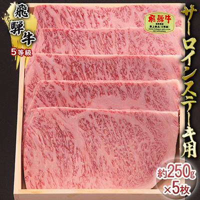 【ふるさと納税】飛騨牛5等級 サーロインステーキ用 約250g×5枚 【サーロイン・お肉・牛肉・ステーキ】