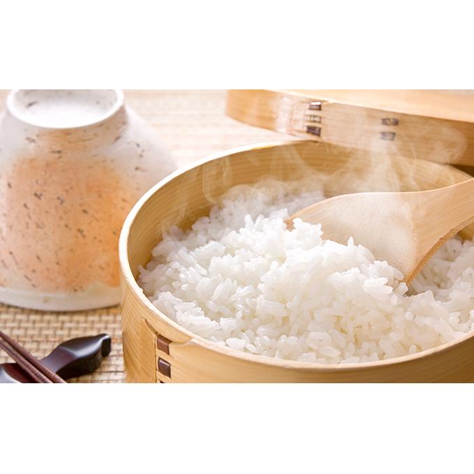 【ふるさと納税】揖斐郡産 味のいび米はつしも精米10kg×2袋 【お米】