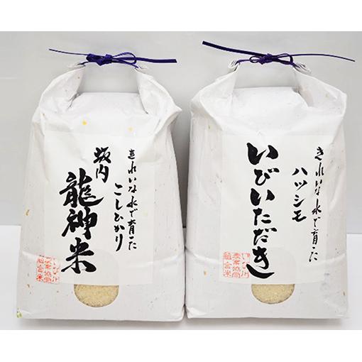 【ふるさと納税】JAいび川プレミアム米セット/白米 5kg×2袋 【お米】