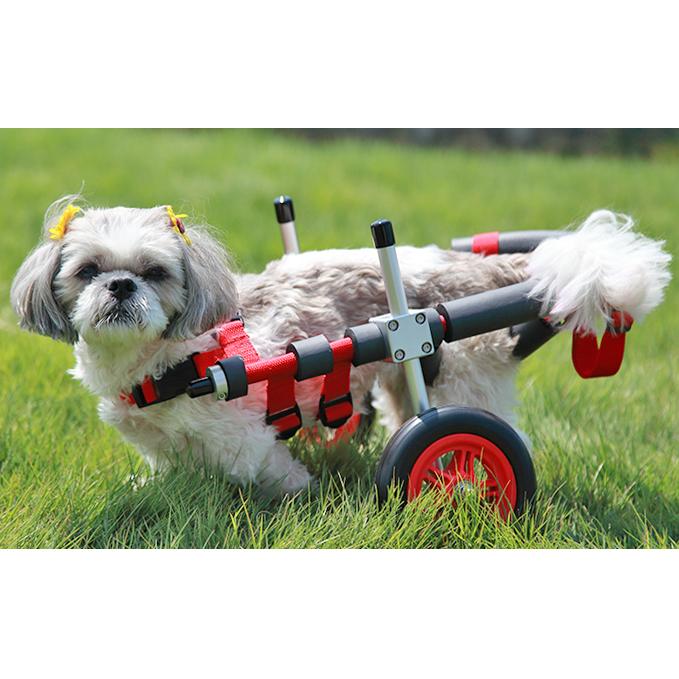 【ふるさと納税】小型犬用二輪車椅子(背丈23~35cm 体重8キロ以下) 【雑貨・日用品】
