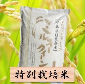 【ふるさと納税】特別栽培米 ミルキークイーン 精米10kg(分搗き可)または 玄米(11Kg) 2019年産