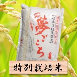 【ふるさと納税】特別栽培米 夢ごこち 精米10kg(分搗き可)または 玄米(11Kg) 2019年産