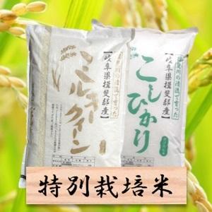 【ふるさと納税】特別栽培米 4Kg ミルキークイーン/コシヒカリ (白米 各2kg) 2019年産