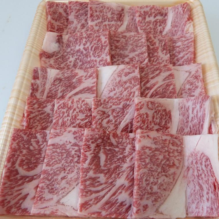 【ふるさと納税】A5等級飛騨牛焼き肉用500g ロース又は肩ロース肉