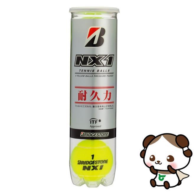 【ふるさと納税】ブリヂストンテニスボールNX1 4個入缶×15ボトル