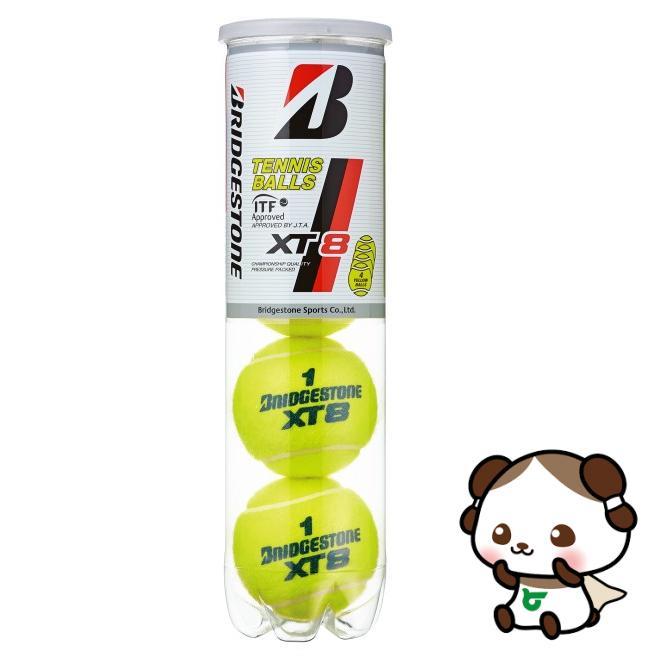 【ふるさと納税】ブリヂストンテニスボールXT8 4個入缶×15ボトル