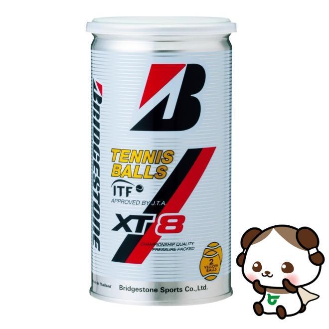 【ふるさと納税】ブリヂストンテニスボールXT8 2個入缶×30缶