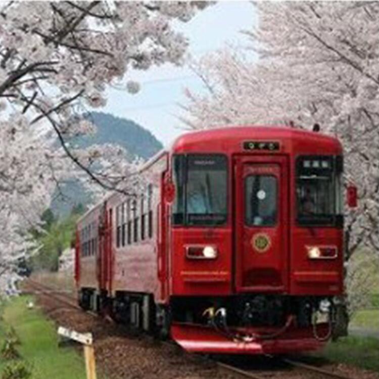 【ふるさと納税】観光列車「ながら」ランチプラン乗車券(ペア)