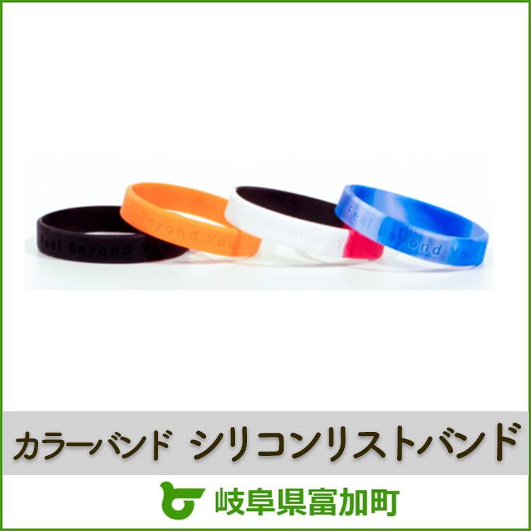 【ふるさと納税】AXF(アクセフ)シリコンリストバンドセット