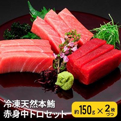 静岡県静岡市 ふるさと納税 冷凍天然本鮪赤身中トロセット 魚貝類 着後レビューで 送料無料 まぐろ マグロ 鮪 未使用