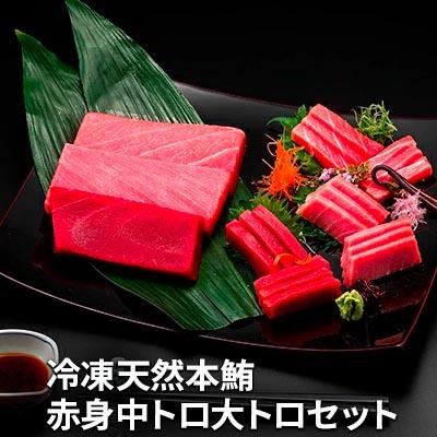 静岡県静岡市 ふるさと納税 値引き 日本 冷凍天然本鮪赤身中トロ大トロセット 魚貝類 マグロ まぐろ 鮪