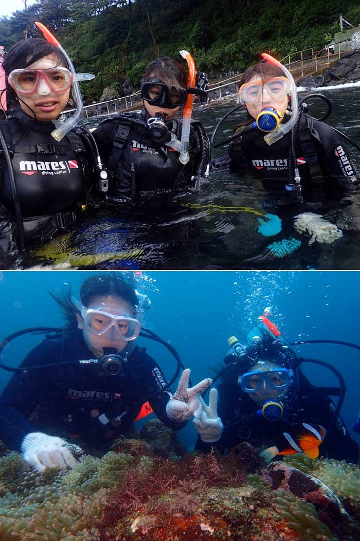 日帰りでOK!伊東・城ヶ崎の海で1日体験ダイビング(1名様)【ふるさと納税】