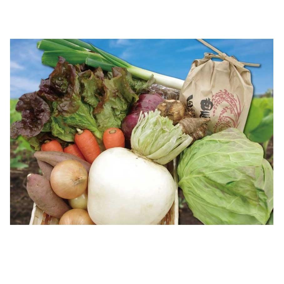 【ふるさと納税】1035富士の新鮮な季節野菜セット