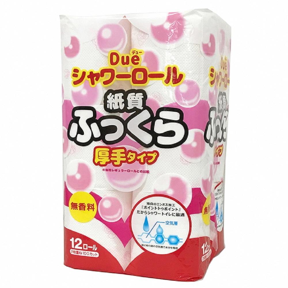 【ふるさと納税】1246デュー紙質ふっくら厚手タイプ シャワートイレ用12R(ダブル)×8パック