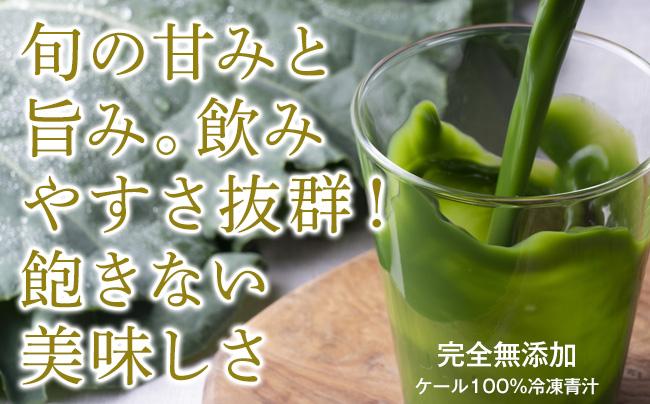 【ふるさと納税】MASUDAの旬搾り青汁 グリーンジュース(ケール100%青汁·90ml×20パック【冷凍】 定期便(3回)
