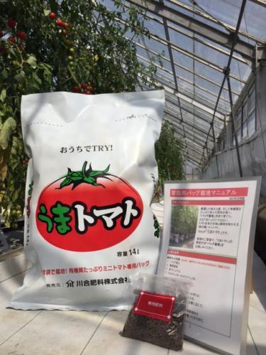 家庭で簡単においしいミニトマトを栽培してみましょう ※トマトの苗は付属しておりません ふるさと納税 即納最大半額 家庭用バック培土 送料無料 激安 お買い得 キ゛フト 002_おうちでTRY