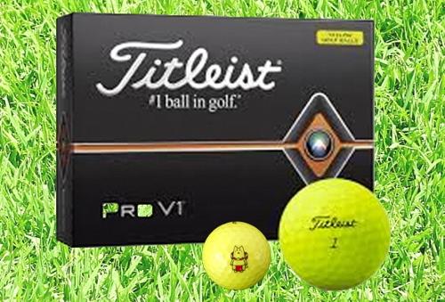 【ふるさと納税】しっぺいオリジナル ゴルフボール(タイトリスト PRO V1 イエロー)