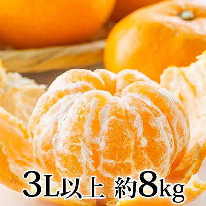 【ふるさと納税】青島みかん(3L以上)約8kg 【果物類・柑橘類・みかん・フルーツ】 お届け:2019年12月下旬頃~2020年2月中旬頃