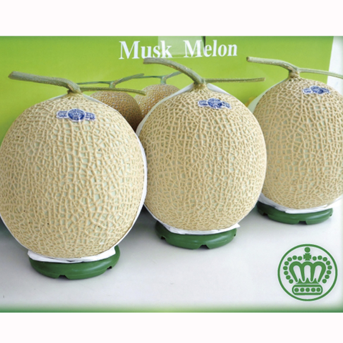【ふるさと納税】クラウンメロン(白上級)3玉 箱入り 【果物類·メロン青肉·3玉】