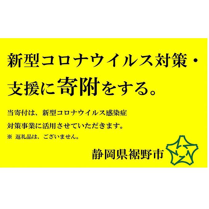 【ふるさと納税】新型コロナウイルス対策・支援に寄附をする(3万円) 【自治体自治体にお任せ】