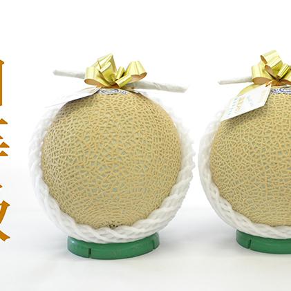 【ふるさと納税】御前崎市産アローマメロン(白)2玉入り 【果物類・メロン青肉】