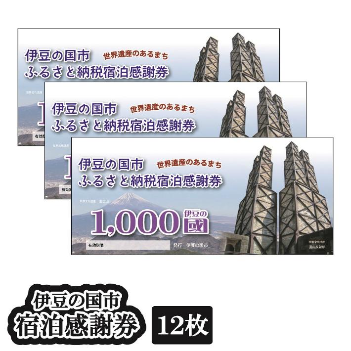 【ふるさと納税】伊豆 旅行 温泉 チケット 伊豆の国市宿泊感謝券 (12枚) 040-001