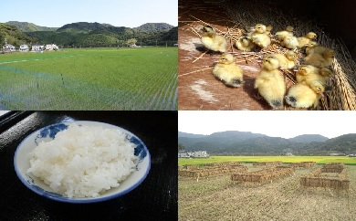 【ふるさと納税】山芳園 天日干し 通年合鴨農法米(うるち米)2kg