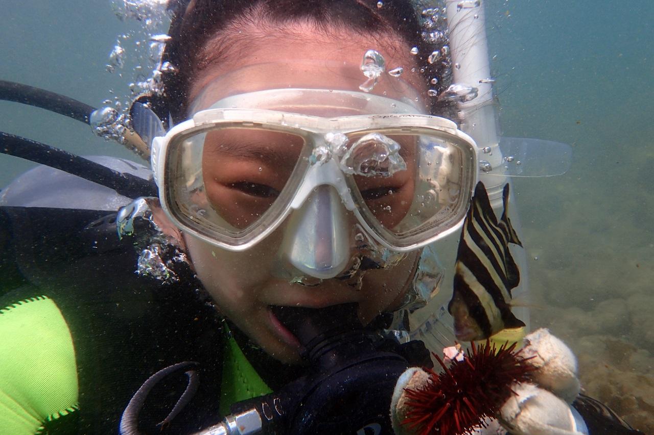 3a1ab8f5c039 ふるさと納税 1名様安心安全マンツーマン体験ダイビング2回:静岡県 ...