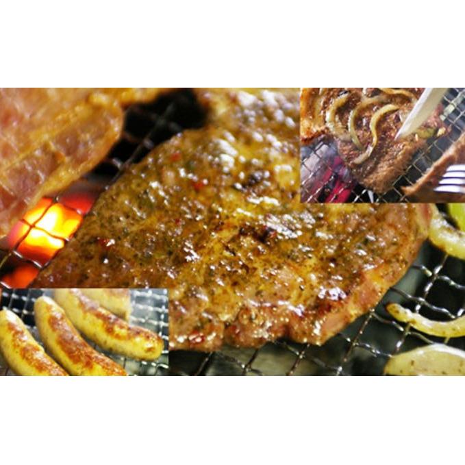 【ふるさと納税】太田川バ-ベキュ-セット(ご家庭の洋風焼き肉にも) 【肉】