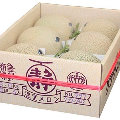 【ふるさと納税】クラウン印マスクメロン(白クラス6玉) 【果物類・フルーツ・くだもの・クラウンメロン・静岡県産】