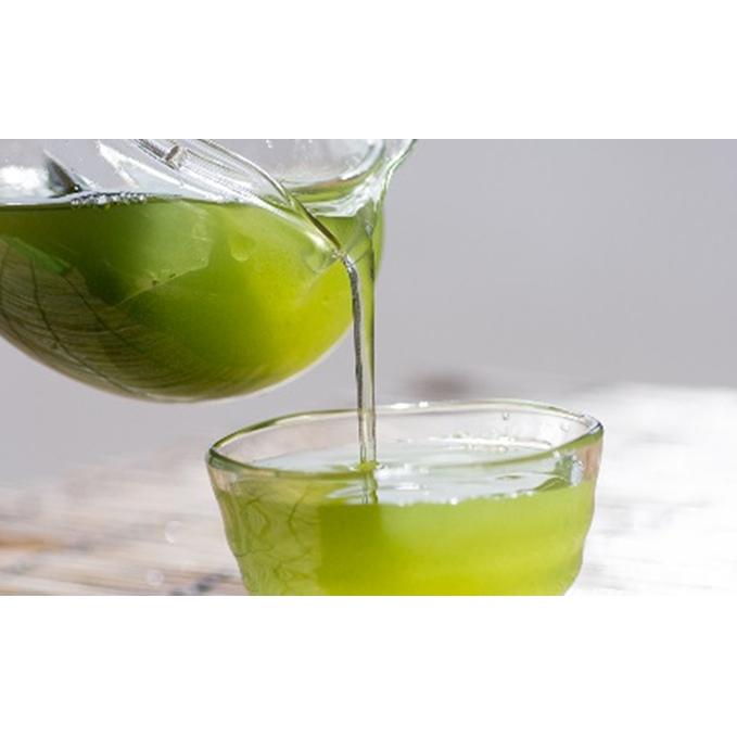 【ふるさと納税】濃旨緑茶ティーバック5g×25ケ入×20袋 【飲料類・お茶・日本茶・セット】