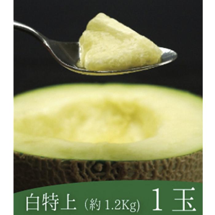 【ふるさと納税】クラウンメロン白中玉1玉入 【果物類・メロン青肉】