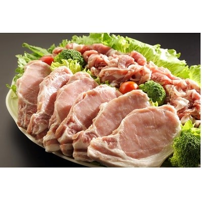岡崎生まれ岡崎育ちのみかわもち豚 ついに再販開始 ふるさと納税 商舗 みかわもち豚ロース テキカツ用 ウデモモ切り落とし盛り合わせ 1200027 計2.1kg
