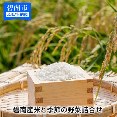 【ふるさと納税】碧南産米と季節の野菜詰合せ H025-004