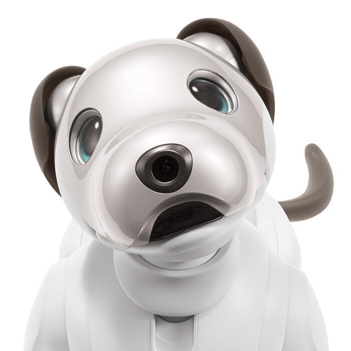 【ふるさと納税】aibo 自律型エンタテインメントロボット(カラー:アイボリーホワイト) 【令和2年度 全国発明表彰「内閣総理大臣賞」受賞】