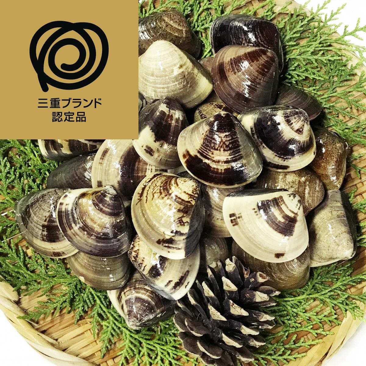 【ふるさと納税】 マルヨシ水産 桑名産中粒天然蛤 1.0kg