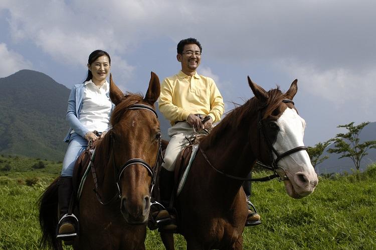 【ふるさと納税】クレイン東海 乗馬スクール(30分)ペアコース