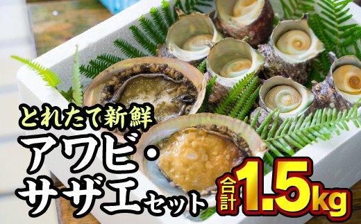 【ふるさと納税】HA-30 尾鷲産 活アワビ・活サザエセット 1.5kg