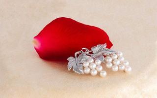 【ふるさと納税】V-3アコヤ真珠ブローチ