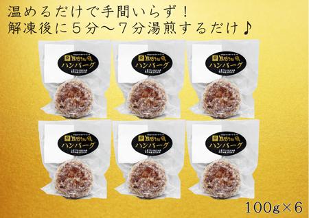 【ふるさと納税】簡単手間いらず 熊野地鶏ハンバーグ詰め合わせ 100g×6