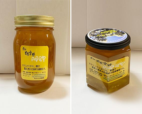 【ふるさと納税】No.221 【超希少】日本蜜蜂ハチミツ(中)(少々)2本セット / 日本蜜蜂蜂蜜 はちみつ 国産 大津市
